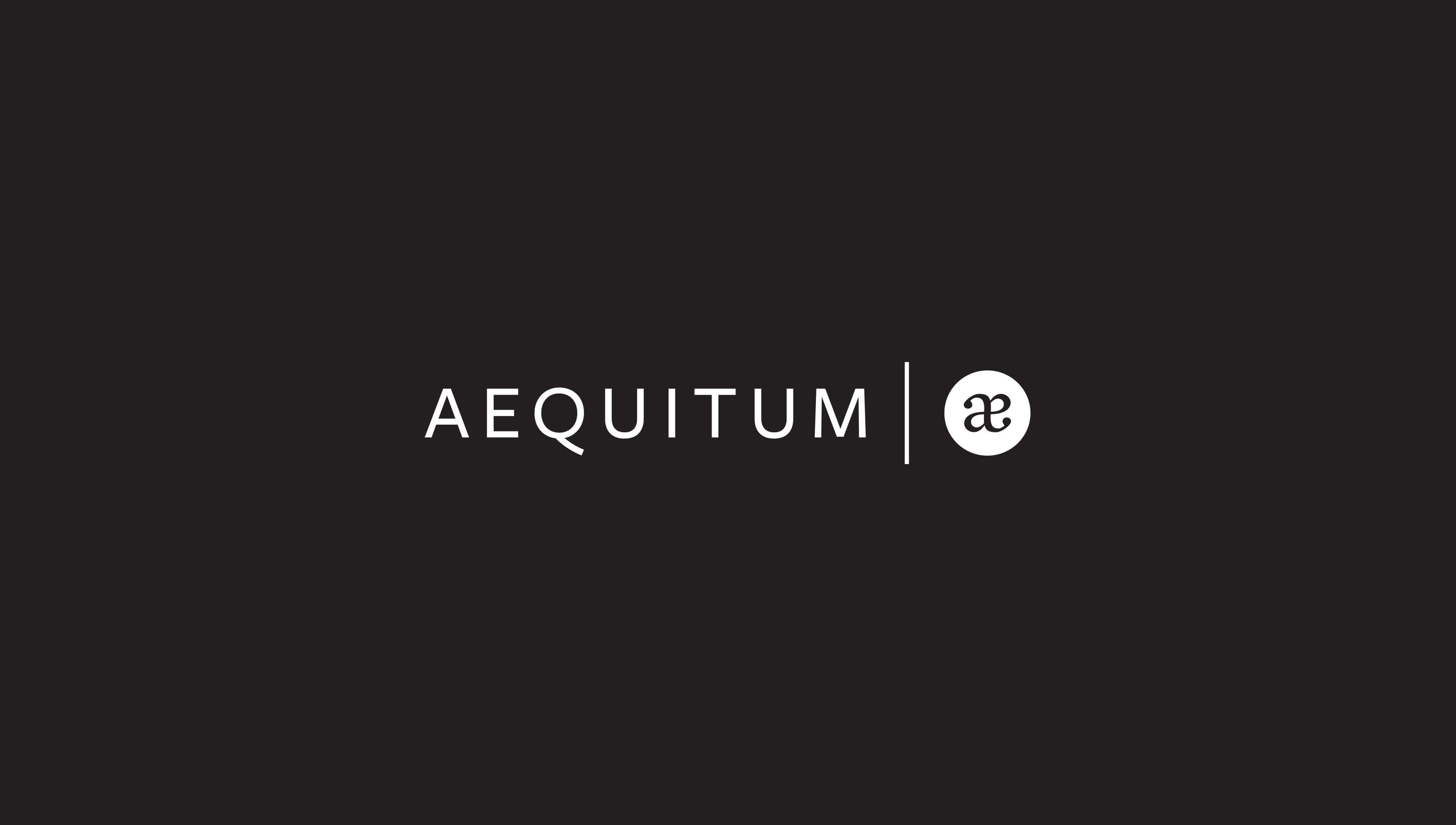 Aequitum Case Study Ander Group
